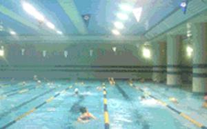 수영장 전경